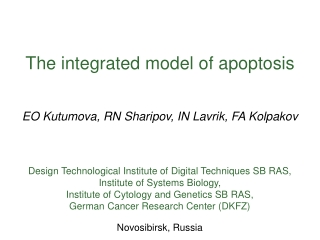The integrated model of apoptosis