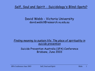 Self, Soul and Spirit  –  Suicidology ' s Blind-Spots?