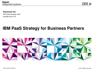 IBM PaaS Strategy for Business Partners