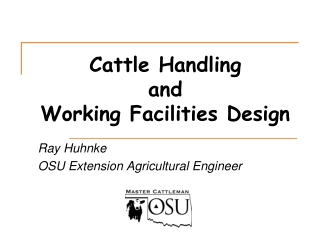 Cattle Handling  and  Working Facilities Design