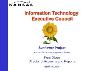 Information Technology  Executive Council