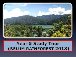 Year 5  Study  Tour  ( BELUM RAINFOREST  2018)