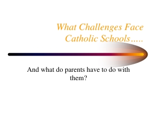 What Challenges Face  Catholic Schools…..