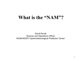 "What is the ""NAM""?"