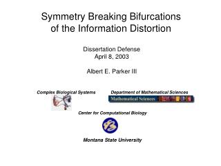 Symmetry Breaking Bifurcations of the Information Distortion