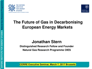 The Future of Gas in Decarbonising European Energy Markets