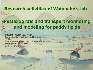 Pesticide fate and transport monitoring and modeling for paddy fields