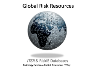 Global Risk Resources