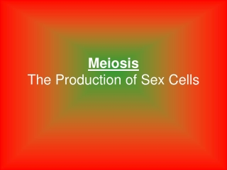 Meiosis The Production of Sex Cells