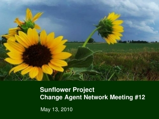 Sunflower Project Change Agent Network Meeting #12