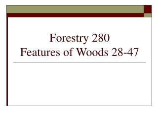 Forestry 280 Features of Woods 28-47