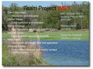 Team  Project  WET