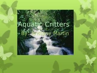 Aquatic Critters