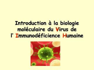 Introduction   la biologie mol culaire du Virus de  l  Immunod ficience Humaine