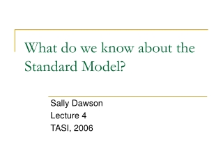 What do we know about the Standard Model?