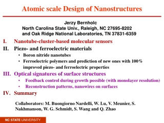 Atomic scale Design of Nanostructures
