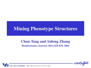 Mining Phenotype Structures