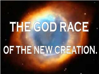 THE GOD RACE