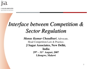 Interface between Competition & Sector Regulation