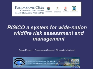 RISICO a system for wide-nation wildfire risk assessment and management