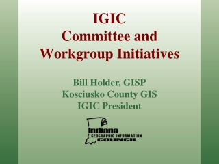 IGIC Committee and Workgroup Initiatives