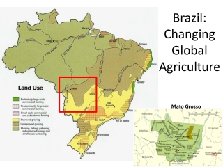 Brazil: Changing Global Agriculture
