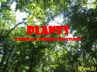 PLANTS (External & Internal Structures)