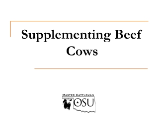 Supplementing Beef Cows