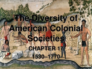 The Diversity of American Colonial Societies