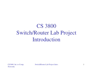 CS 3800  Switch/Router Lab Project Introduction