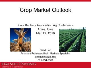 Crop Market Outlook