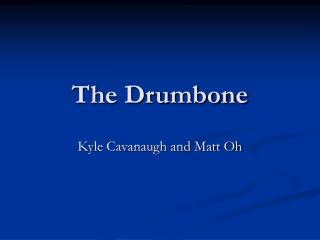 The Drumbone