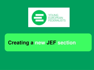 Creating a  new  JEF  section