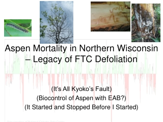 Aspen Mortality in Northern Wisconsin – Legacy of FTC Defoliation