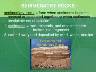 SEDIMENATRY ROCKS