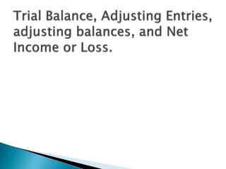 Trial Balance, Adjusting Entries, adjusting balances, and Net Income or Loss.