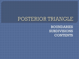 POSTERIOR TRIANGLE