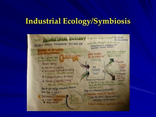Industrial Ecology/Symbiosis