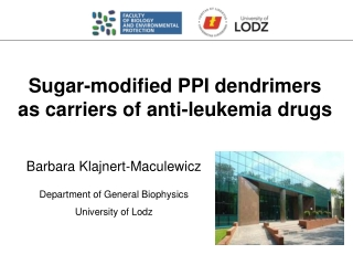 Sugar-modified PPI dendrimers  as carriers of anti-leukemia drugs
