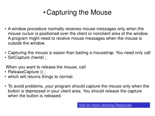 Capturing the Mouse