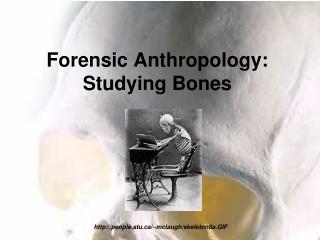 Forensic Anthropology: Studying Bones