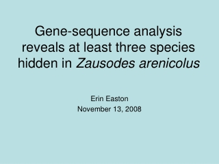 Gene-sequence analysis reveals at least three species hidden in  Zausodes arenicolus