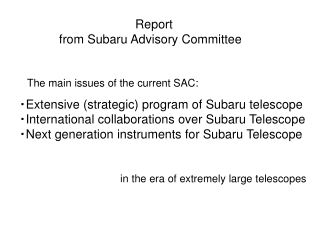 Report from Subaru Advisory Committee
