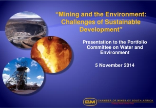 """""""Mining and the Environment: Challenges of Sustainable Development"""""""