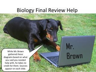 Biology Final Review Help