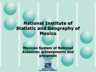 National Institute of Statistic and Geography of Mexico