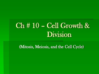 Ch  # 10 – Cell Growth &                          Division