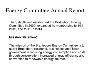 Energy Committee Annual Report