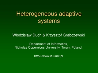 Heterogeneous adaptive systems