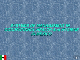 SYSTEMS OF MANAGEMENT IN OCCUPATIONAL HEALTH And HYGIENE IN MEXICO